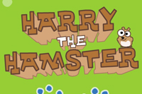 Il Cricetino Harry The Hamster