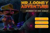 Mr. Looney Adventure